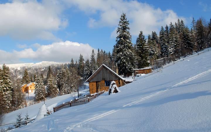 snowy carpathians