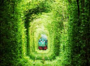 liebe tunnel