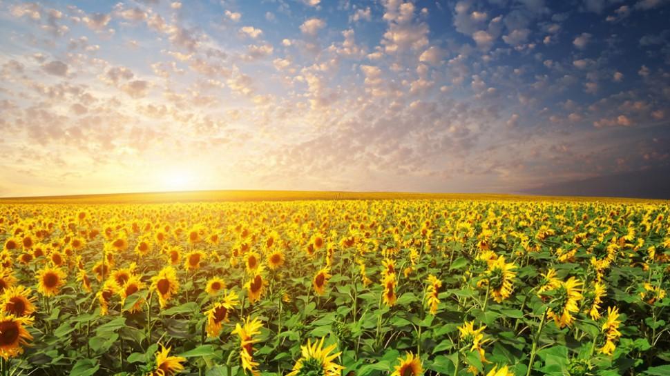 beautiful ukraine